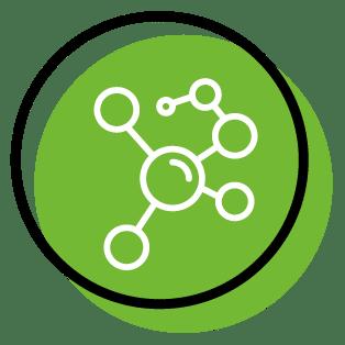 Questions sur la quercétine et ses caractéristiques